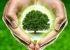 Avatar-energia-e-vita-energie-rinnovabili