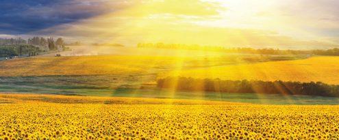 genialenergy-risparmio-energetico-solare-termico